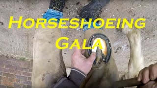 Horseshoeing Gala