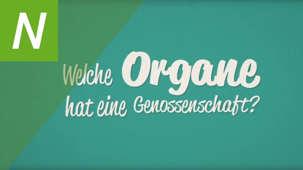 genossenschaftswesen von a bis z folge 2 deutsch  youtube