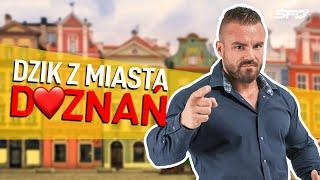 Dzik z miasta doznań - Dzień z Karolem Małecki - SFD