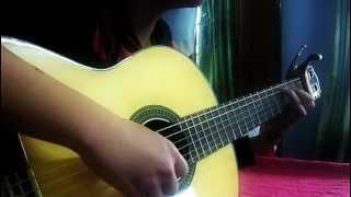 Because I'm Stupid Guitar HBK
