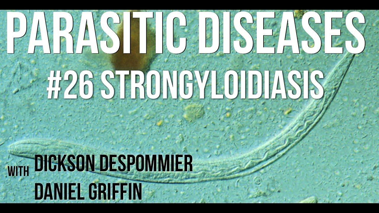 strongyloidosis parazita
