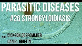 strongyloidosis a bőr alatt, hogyan kell kezelni enterobiasis kezelés hány napig