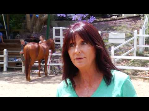 Horses for courses, it's an internship with a twist - Griffith University