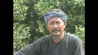 BẼ BÀNG, Disc 02, (Vũ Linh, Thanh Ngân, Linh Tâm, Diệp Lang...)