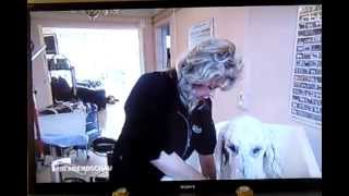 Der rbb im Hundesalon BLACK & WHITE Dogs Coiffeur and More