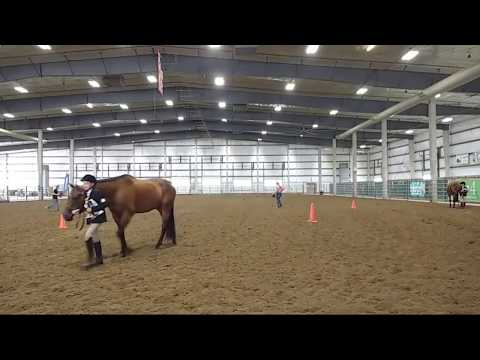 2019 Lancaster County Super Fair - 4-H Horse English Show Part 2