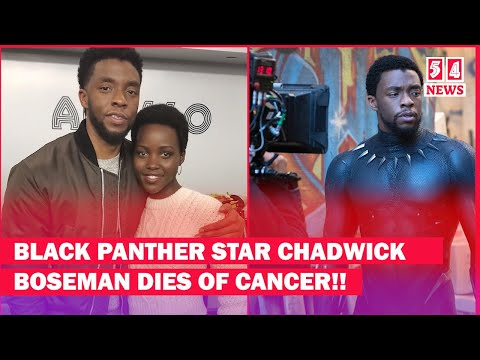 what-the-media-is-not-telling-you-about-black-panther-star-chadwink-boseman's-death|tv54-news