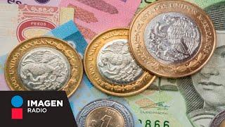 Desplome de la economía de México, en opinión de Ángel Verdugo