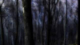 Acker Bilk - WALK in the Black Forest