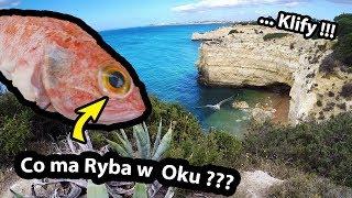 To Coś Było w Oku Ryby !!! - Pierwsze Patroszenie? + Klify w Portugalii i Zachód Słońca (Vlog #298)