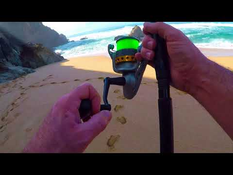 Veterans Day 2017   Part 3   The Perch Catch