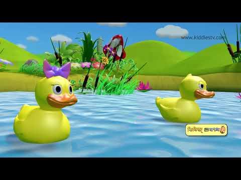 Five Little Ducks Bangla rhyme | bengali baby songs | bangla rhyme | kids | songs | kiddiestv bangla