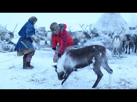 BBC Living with Nomads 2/3 Siberia