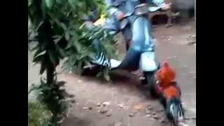 Crazy Chicken vs motorcycle