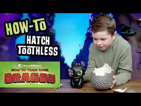 How To Train Your Dragon How To Play With Toothless