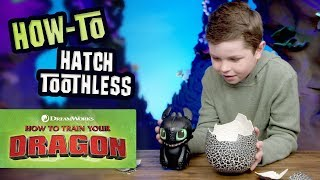 How To Train Y๐ur Dragon How To Play With Toothless