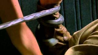 Decoys 2: Alien Seduction - Trailer