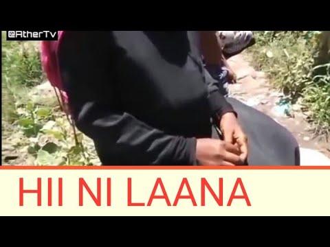 Download HII NI LAANA -BABA AFANYA MAPENZI NA MTOTO WAKE(UJAUZITO WAZUA GUMZO)...