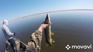 Отличная рыбалка на щуку Вторая часть