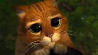 Shrek 2 - Puss in Boots (Video)