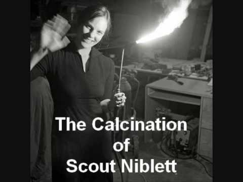 The Calcination of Scout Niblett
