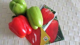 видео Какие семена перца самые лучшие для открытого грунта?