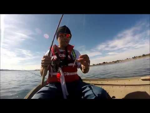 fishing with gulp sandworm