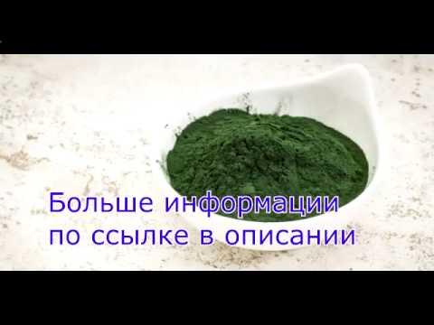 Спирулина (водоросль) - полезные свойства и применение