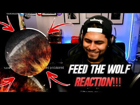 OMG MORE! Breaking Benjamin   Feed The Wolf REACTION