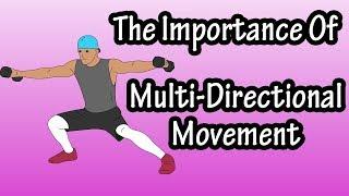 Importance Of Multi-Directional Movement - Multi-Directional Movement Training Exercises