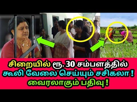 சம்பளத்திற்கு வேலை செய்யும் சசிகலா ? Sasikala, Illavarasi, ADMK, Tamil news live news