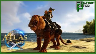 Atlas 11 - TAMING A TIGER! HOW TO TAME A TIGER!