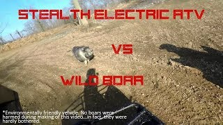 Electric ATV vs Wild Boar - Silence Wins