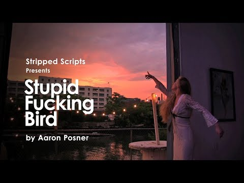 Stupid Fucking Bird by Aaron Posner
