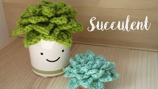 If you're anything like me I simply love succulent plants and cacti. I think they're so cute and fun to look after, so what better than a version that is even easier to ...