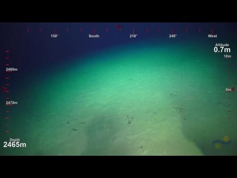 ROV SuBastian Dive 096- Mata Fa - Underwater Fire