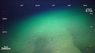ROV SuBastian Dive 096- Mata Fa - Underwater Fire thumbnail