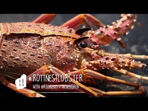Taste Master: Rottnest Lobster