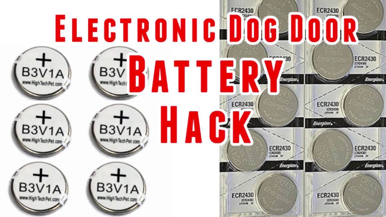 High Tech Pet Collar Battery Hack   B3V1A Vs CR2430 Batteries