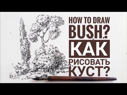 Скетчбук. . Скетчинг  для начинающих. Часть 3. Как рисовать куст Эдуард Кичигин