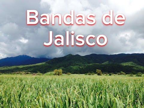 """Mix de Cumbias con Bandas de los 90's Puras de Jalisco"""""""