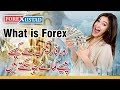 Lecture 1- What is Forex and how does It work in URDU ...