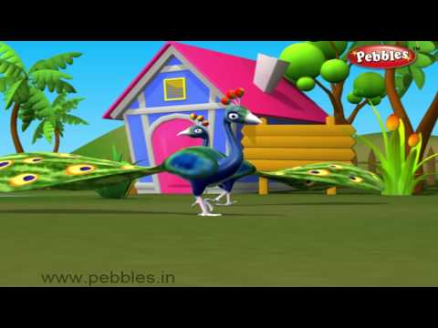 Peacock Bird Nursery Rhyme | Bird Rhymes | Nursery Rhymes For Kids | Nursery Rhymes 3D Animation