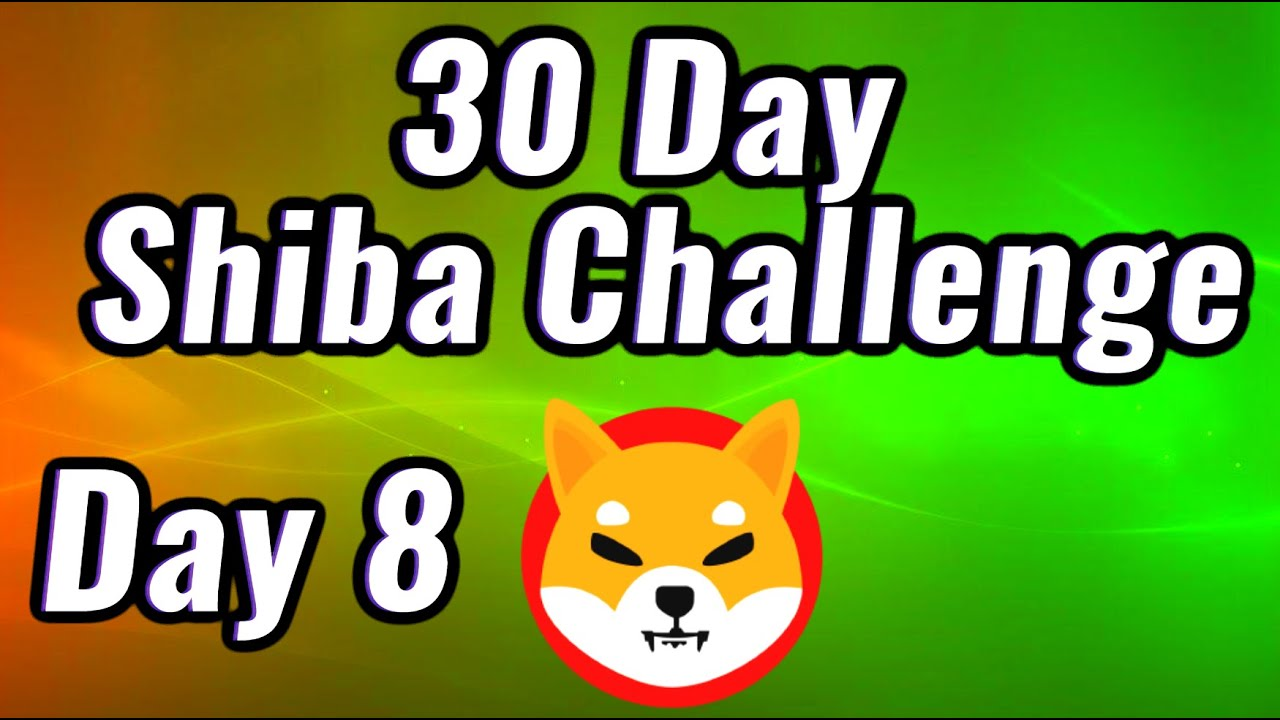Day 8 of 30 Day Shiba Challenge - I'm Buying Shiba Inu For 30 Straight Days - Are you With Me!