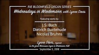Wednesdays in Wiedemann with Lynne Davis - September 5, 2018 edit2