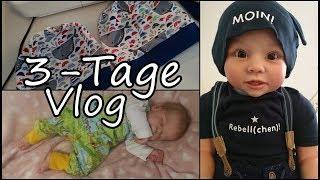 3 Tage Vlog | Nähen | Alltag mit Reborns [Reborn Baby Deutsch]