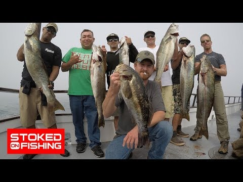Fishing For Huge White Sea Bass And Yellowtail With Veterans From Save The Brave