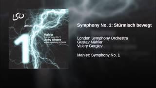 Play Symphony No. 1 Stürmisch Bewegt (Valery Gergiev, London Symphony Orchestra)