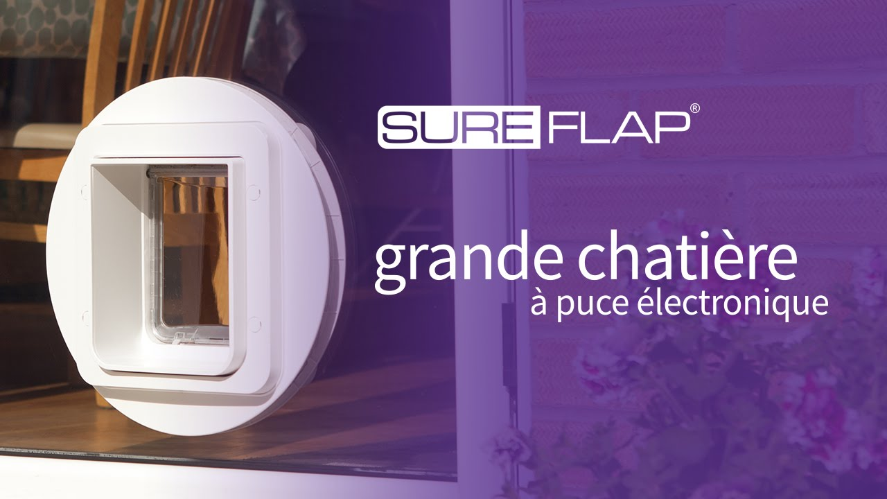 Installation de la grande chati re puce lectronique for Installer chatiere porte garage