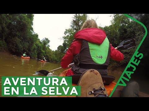 Ecoturismo en la Selva del Iguazú - Yacutinga Lodge